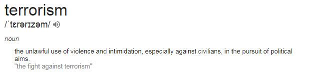 Define-Terrorism